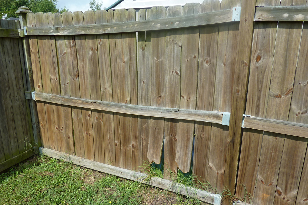 What Are Common Fence Issues That Need To Be Repaired?