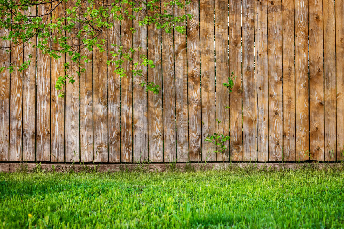 Five Steps to Care for Your Wooden Property Fence
